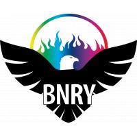 Logo de la structure Binary Eagle E-Sport