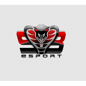 Logo de la structure Same Blood E-sport