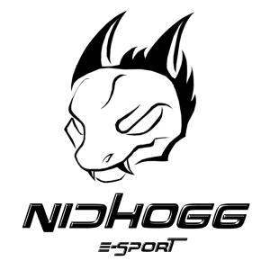 Logo du partenaire NidhoGG E-sport